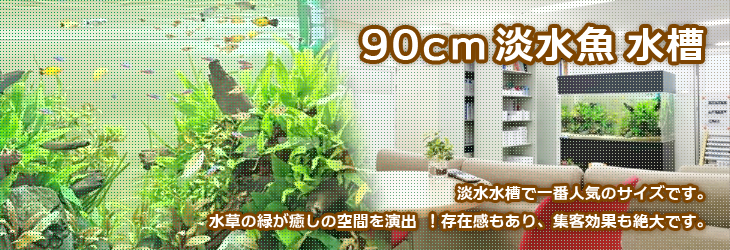 90cmの淡水魚水槽 水槽レンタルな神奈川アクアガーデンへ