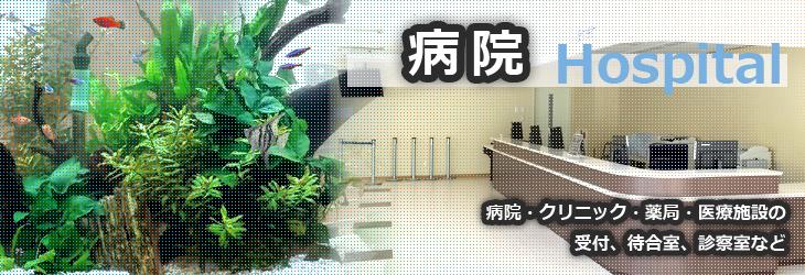 水槽設置事例 「病院」編