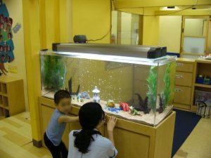 神奈川県 横浜 幼稚園様