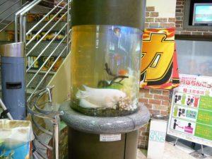 神奈川県 横浜 パチンコ店様