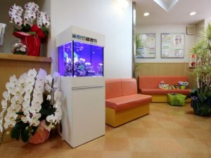 横浜市 病院様 幻想的な水槽