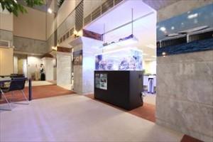 横浜市 企業様 環境に配慮したサンゴの水槽