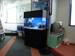 横浜市内 歯科クリニック様 待合室に海を表現!