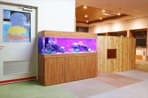 川崎市内 介護福祉施設様 熱帯魚を見て心を癒しましょう!