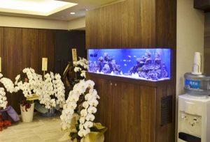 横浜市内 美容クリニックに120cmサンゴ水槽
