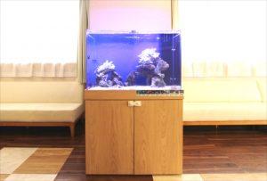 横浜市内  内科皮膚科待合室に90cm海水魚水槽