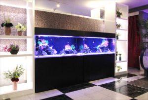 厚木市 ホテルに120cm海水魚水槽2台