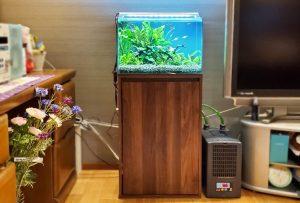 個人宅 リビングに癒しの45cm淡水魚水槽