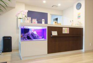藤沢市内 クリニックに80cm海水魚水槽を設置
