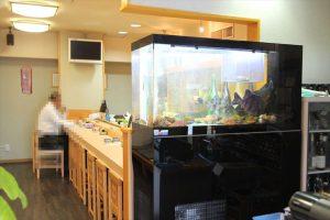千葉県 飲食店 お寿司屋さんに120cm活魚水槽
