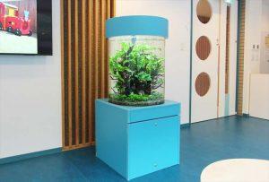 東京都 保育園に60cm円柱淡水魚水槽