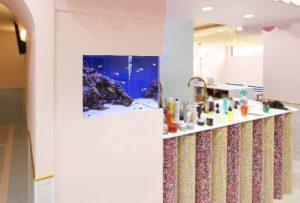 横浜市内 美容室の海水魚水槽をサイズ変更