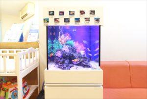 横浜市内 小児科クリニックに45cm海水魚水槽